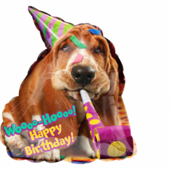 Happy Birthday Basset Hound kutyás fólia lufi SuperShape 55x63cm