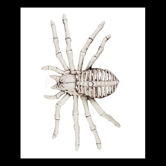 Pók csontváz 12 x 24 cm